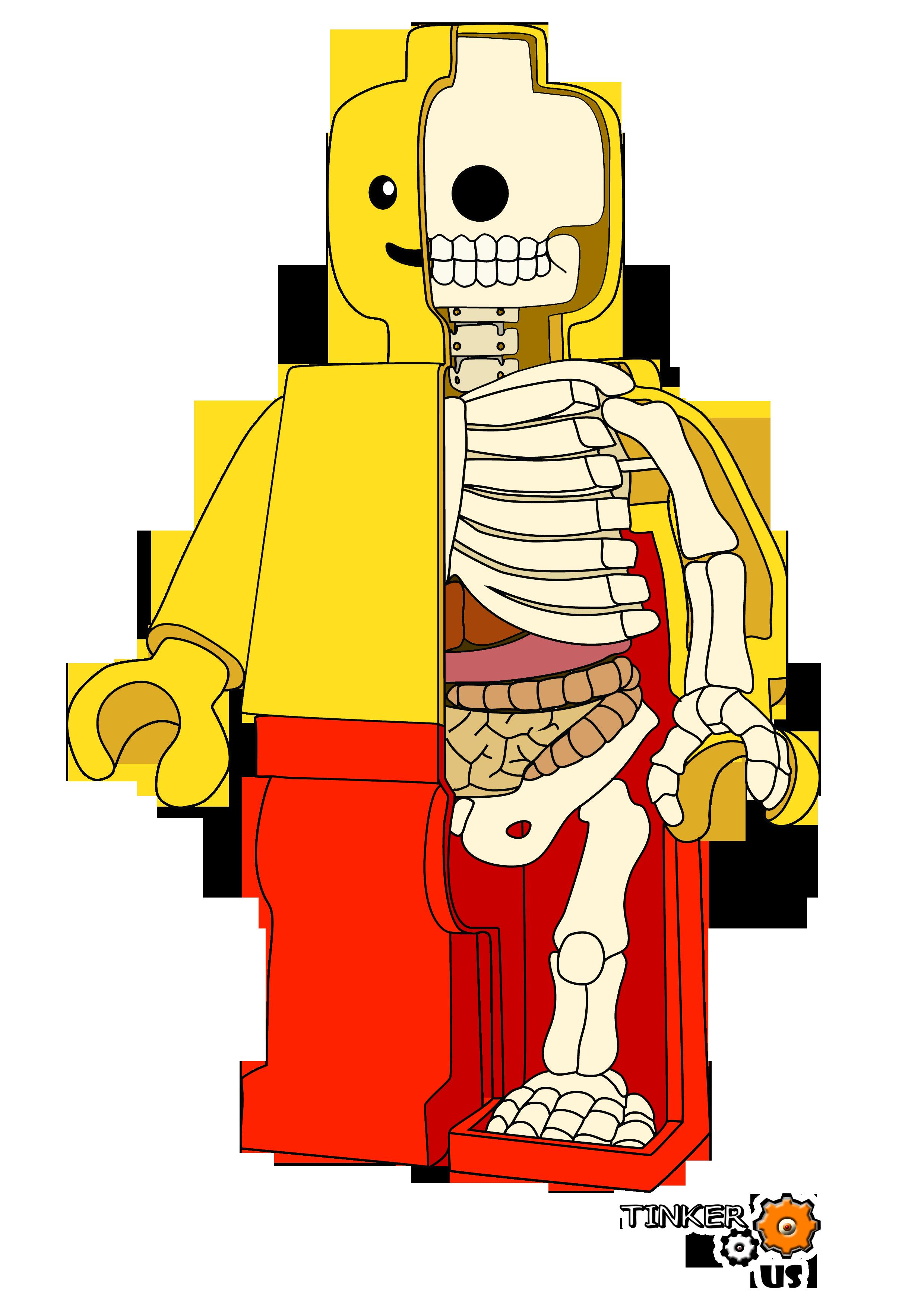 L anatomie d un lego tinkerus 39 s blog - Coloriage personnage lego ...